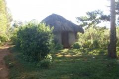 General Images of Esabalu